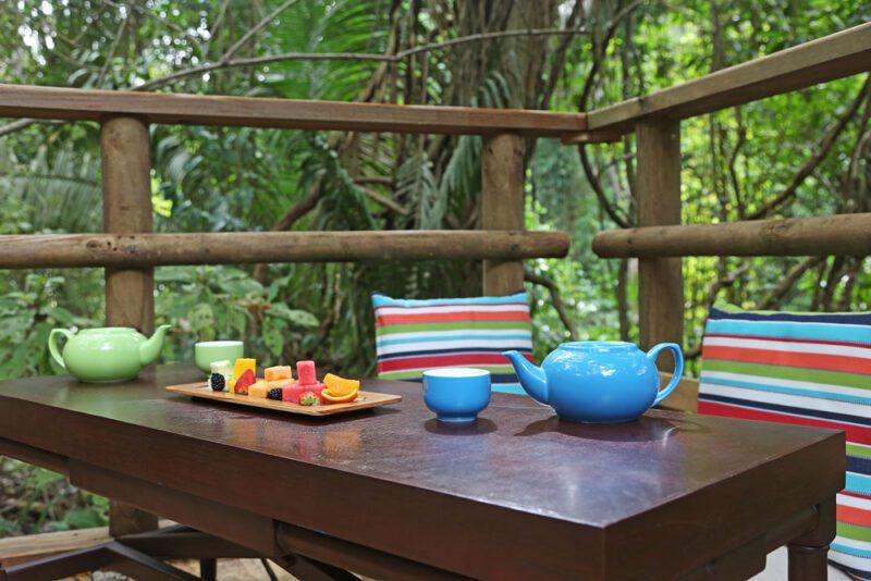 Mesa de picnic en la selva