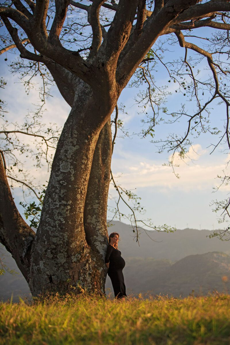 Maternity portrait in front of Guanacaste Tree