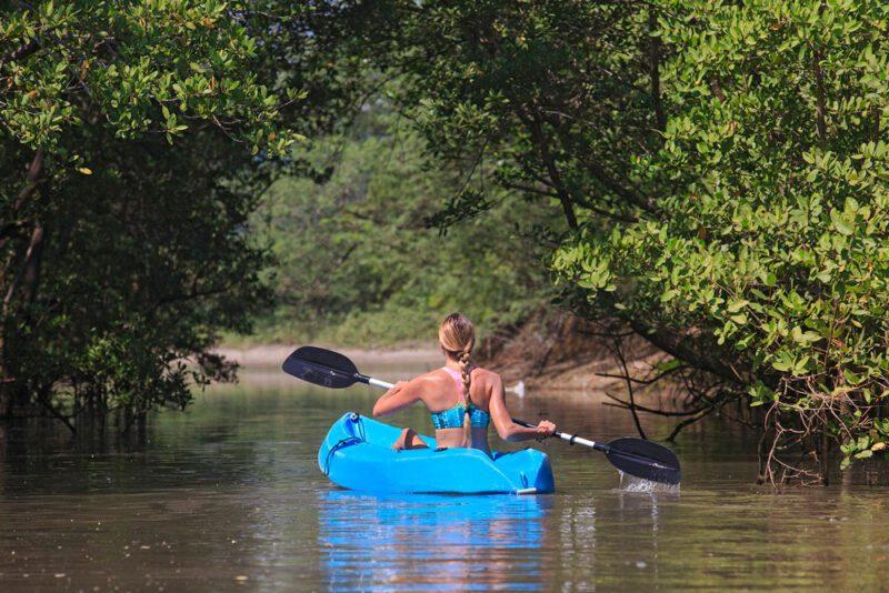 Mangrove Kayaking   Costa Elena