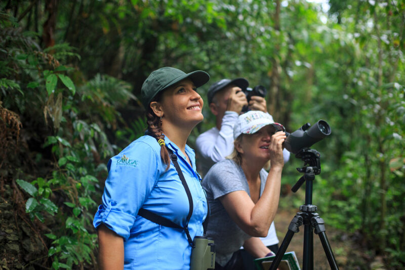 Naturalist guide takes tourists on a forest birdwatching tour - Arenas del Mar | Cayuga Collection